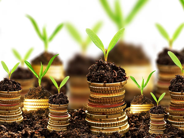 why-making-your-business-more-sustainable-doesnt-have-to-be-expensive-or-hard